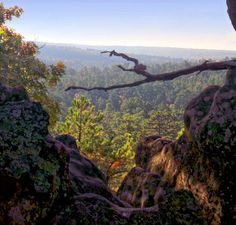 The Huffington Post picked Robbers Cave State Park in Wilburton as the number one state park in the country for surviving a zombie apocalypse!