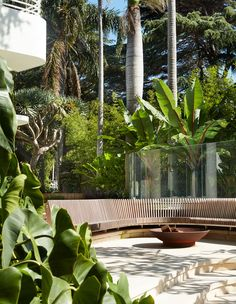 Brazilian + Mediterranean Influences Combine In This Sydney Home Tropical Landscaping, Tropical Garden, Steel Frame Doors, Bungalow Renovation, Outdoor Gardens, Modern Gardens, Landscape Architecture Design, Farm Stay, Shades Of Teal