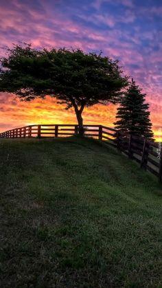 Zachód słońca nad polem uprawnym - Tapeta na telefon Impreza, Country Roads, Wallpapers, Park, Outdoor Decor, Beautiful, Instagram, Wallpaper, Parks