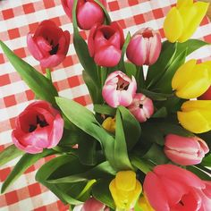I love tulips!! I need to unpack my paint and brushes... #inspiration #flowers #floral #tulips #colorful #happy #picoftheday #spring #artist