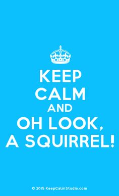 [Crown] Keep Calm And Oh Look, A Squirrel!