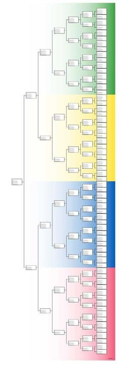 Family History Color pedigree