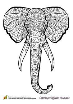 Dessin à colorier d'une tête d'éléphant d'Afrique - Hugolescargot.com