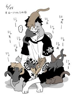 Trafalgar Law and cats. This is acceptable.