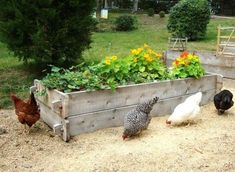 Farmstead Raised Beds are a rustic style raised bed that are easy to assemble and require no tools.