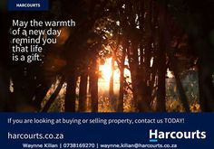 For all your property requirements in Cape Town cbd and Atlantic seaboard from buying,selling to investing,feel free to contact me. Life Is A Gift, Cape Town South Africa, Investing, Day, Stuff To Buy, Free