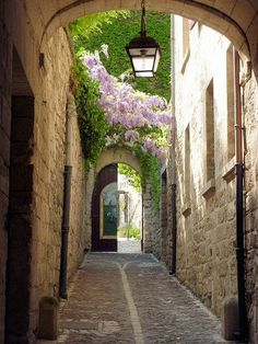 Spring in St Remy Provence, France