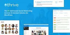 Thrive v1.9.2 – Intranet & Community WordPress Theme