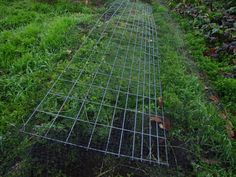 I was told a low fence on the ground deters deer as well as a high fence... anyone try this?