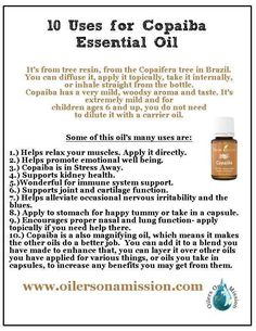10 Uses For Copaiba Essential Oil - Mummy Deals: Copaiba Essential Oil, Essential Oils 101, Essential Oil Blends, Copaiba Oil, Young Living Oils, Young Living Essential Oils, Healing Oils, Just In Case, Yl Oils