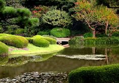 Discover the most beautiful gardens in Tokyo with our guide to the best 6 in the city. Enjoy the scenery, tea and fresh air. Most Beautiful Gardens, Beautiful Park, Glasgow, Tokyo Imperial Palace, Palacio Imperial, Garden Villa, Garden Route, Exterior, Garden Features
