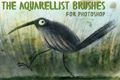 The Aquarellist Brushes (PS CS6+) by Dukal on @	illustrator brush, illustrator brushes, pencil, paint, acrylic, vintage, retro, grunge, pen, outline, sketch, art brush, hand drawn, halftone, comic, cartoon, wood, ink, scribble, texture, tattoo, line, sponge, painted, technical drawing, free brushes, stipple