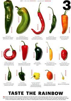 Sweet Banana Peppers, Stuffed Banana Peppers, Stuffed Sweet Peppers, Hot Pepper Chart, Types Of Peppers, Stuffed Anaheim Peppers, Hot Sauce Recipes, Taste The Rainbow, Desert Recipes