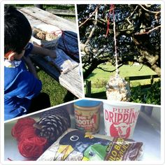 DIY bird feeders- all you need is pinecones, string, equal parts of smooth peanut butter and dripping and wild bird seed. Master 5 LOVED getting his hands messy to make these