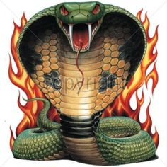 Flaming Cobra Snake HEAT PRESS TRANSFER for T Shirt Sweatshirt Tote Fabric  #263…