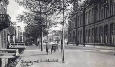 Holland, Utrecht, Leiden, Vintage Postcards, Street View, City, Pictures, Outdoor, Capri