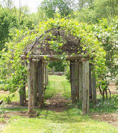 Wedding Garden Gate Rustic Arbor 24 New Ideas # arbor … Metal Arbor, Wooden Arbor, Small Garden Arbour, Garden Archway, Rustic Arbor, Wedding Arbors, Persian Garden, Building A Pergola, Professional Landscaping