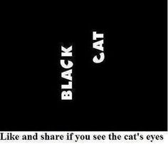 Black cat Optical illusions-dailykos.com