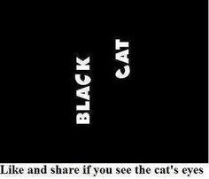 Magnifique illusion d'optique. Si on fixe les mots, des yeux de chat apparaissent !