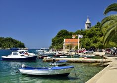 Day Trips from Dubrovnik to Cavtat