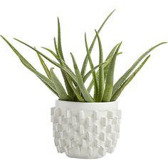 chunky white block planter | CB2