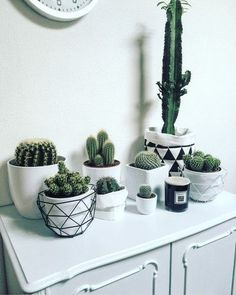 Just think if these cactus were Faux you would never get needles in your skin when you bumped up against them!! #homedecor #decoration #decoración #interiores