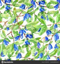 Скачайте стоковую фотографию Seamless background with ripe blue berries and green leaves on honeysuckle branches. Vintage nature concept, hand drawn botanical illustration with watercolor design elements - 202484100 из многомилионной коллекции лицензионных фотографий, иллюстраций и векторных изображений Depositphotos.