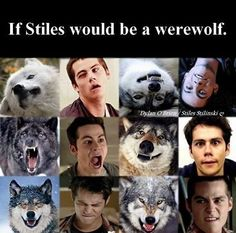 Image may contain: 5 people, text - Teen Wolf - Humor Teen Wolf Poster, Teen Wolf Art, Teen Wolf Scott, Teen Wolf Ships, Teen Wolf Boys, Teen Wolf Dylan, Teen Wolf Memes, Teen Wolf Imagines, Teen Wolf Quotes