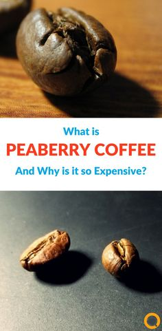 "If you spend any time searching across the internet for different varieties of coffee, you may have stumbled upon the ""peaberry"" phenomenon that has sprung up in recent years. You may have asked yourself ""Why is there such a premium for peaberry coffee?"""