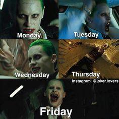 Joker Meme, Funny Joker, Joaquin Phoenix, Gotham City, Joker Love Quotes, Harley And Joker Love, Les Oscars, Harey Quinn, Jared Leto Joker