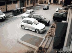 Aprenda como não estacionar com esse gif