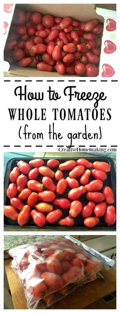 Freezing tomatoes from the garden is easy when you know how to do it the right way.