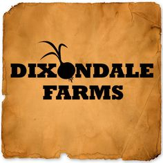 Three keys to growing good onions are to keep them weed free, fertilize them when needed, and keep them sprayed to prevent disease in the leaves. Dixondale Farms' fertilizer and chemical products help your onion crop grow and stay disease-free. Garden Catalogs, Seed Catalogs, Gardening Supplies, Gardening Tips, Onion Storage, Types Of Onions, Planting Onions, Chemical Products