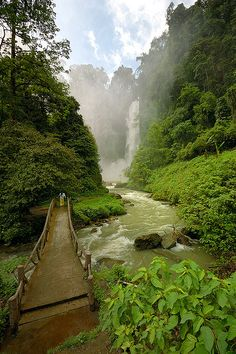 bridge to Dongon Falls, South Cotabato, Philippines by allanbarredo
