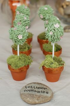 fairy lollipop topiaries....but you could use cakepops too.