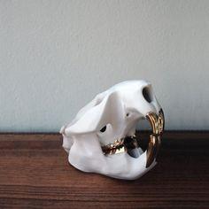 Porcelain Beaver Skull with 14k gold luster by Porcelainskulls