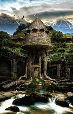 Looks like it could be Radagast the Brown's home