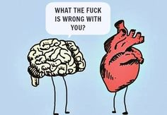 Funny pictures about Trouble Maker. Oh, and cool pics about Trouble Maker. Also, Trouble Maker photos. Heart Vs Brain, Humor Grafico, Story Of My Life, Laugh Out Loud, Laugh Laugh, The Funny, Freaking Hilarious, True Stories, I Laughed