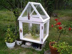 Greenhouses, Terrarium, Home Decor, Green Houses, Terrariums, Decoration Home, Glass House, Room Decor, Home Interior Design