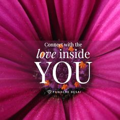 The quality of your life is determined by the clarity of your connection to yourself. Each day you dedicate to your purpose, well-being, and fulfillment, you forge a deeper connection with the love inside you.