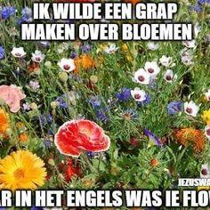 in het Engels was ie flower