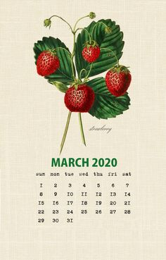 Most up-to-date Free of Charge cute March 2020 calendar Popular Printable calendars offer people who have an expedient technique to keep an eye on the changing time Calendar March, Printable Calendar 2020, Blank Calendar Template, Vintage Calendar, Calendar Wallpaper, Wallpaper Iphone Cute, Wallpaper Backgrounds, Wallpapers, Day Book