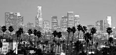 Downtown Los Angeles skyline with Palm trees