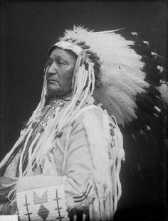 Roan Bear - Owohenupa – 1910