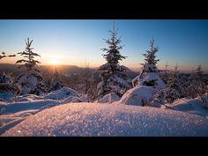 Im Schnee fotografieren 3 Fehler die du vermeiden solltest