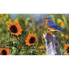 Custom Decor Bluebird Sunflowers Doormat ** Check out this great product. (This is an affiliate link and I receive a commission for the sales)