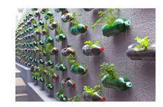 que se puede reciclar: se puede reciclar las botellas de vidrio, papel, plástico, latas y cartón