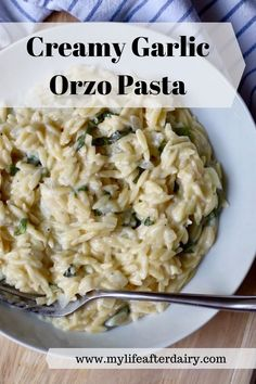 Creamy garlic orzo pasta made with a delicious garlic cream sauce is the ultimate comfort food! This dairy-free and vegan dish makes a delicious dinner and the perfect side to any meal! #dairyfree #vegan #sidedish Creamy Pasta Dishes, Pasta Side Dishes, Creamy Pasta Recipes, Pasta Sides, How To Cook Orzo, Creamy Garlic Sauce, Homemade Hamburgers, Vegan Dishes, Casseroles