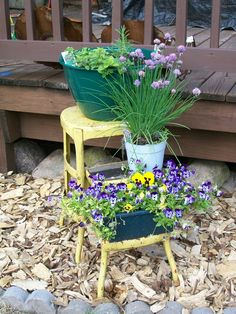 Step stool plant stand