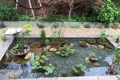 pots should not be visible Small Water Gardens, Fish Pond Gardens, Container Water Gardens, Indoor Pond, Indoor Water Garden, Garden Bathtub, Fish Pool, Moss Plant, Garden Lanterns